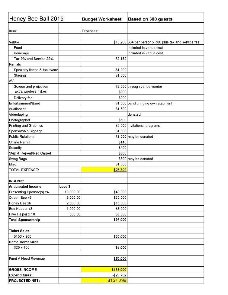 Simple nonprofit budget in Excel